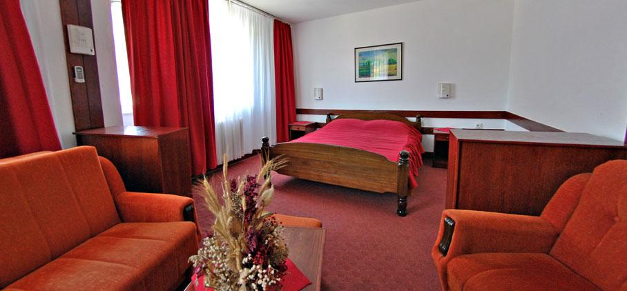 sobe u sokobanji - hotel Zdravljak